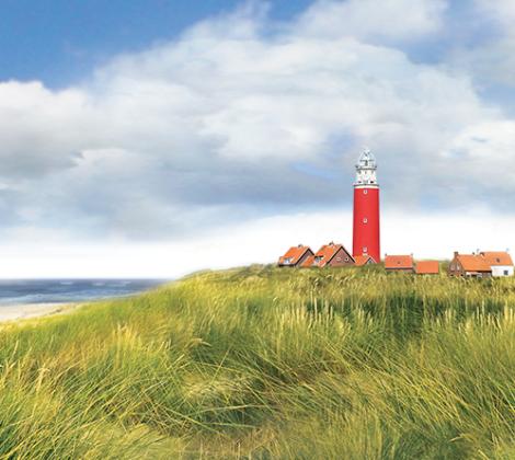 Texels: Lammetjes en zo
