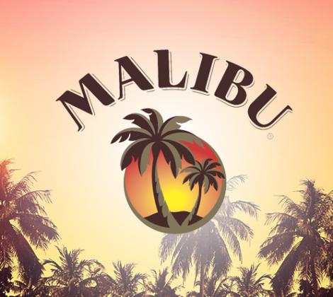 Malibu mixen, een garantie op succes