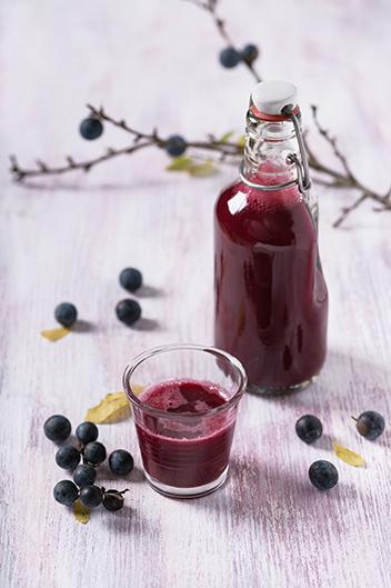 Sloe Gin Recept