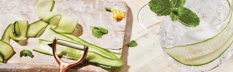 Fever Tree Cucumber Water, een heerlijke manier om eenvoudig een frisse gin & tonic te serveren