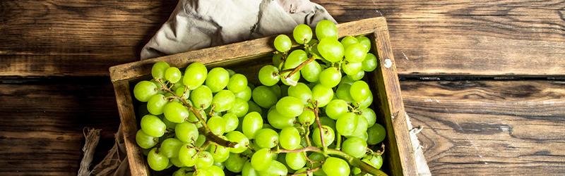 Chardonnay vs Sauvignon Blanc - Verschillende druiven, verschillende wijn.