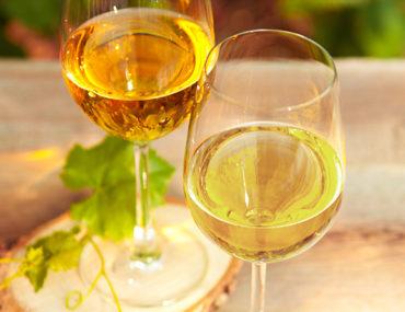Chardonnay vs Sauvignon Blanc, wat zijn de verschillen?