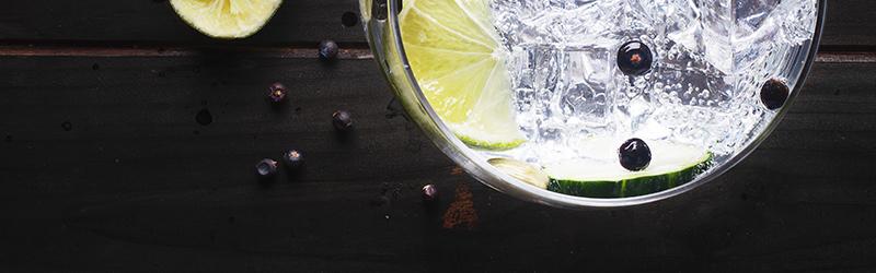 Le Tribute Gin - DrankDozijn banner