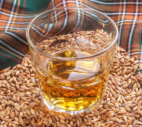 Single grain whisky: lees meer over deze whiskysoort