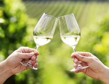 Pinot grigio en sauvignon blanc: dit moet je weten