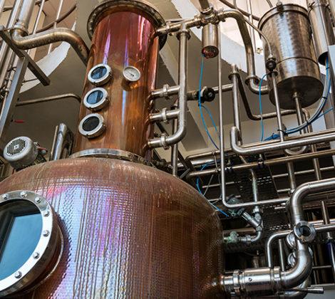 Hoe wordt gin gemaakt? We leggen het uit!