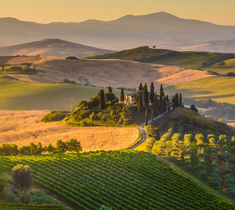 Italiaanse wijnen: écht genieten