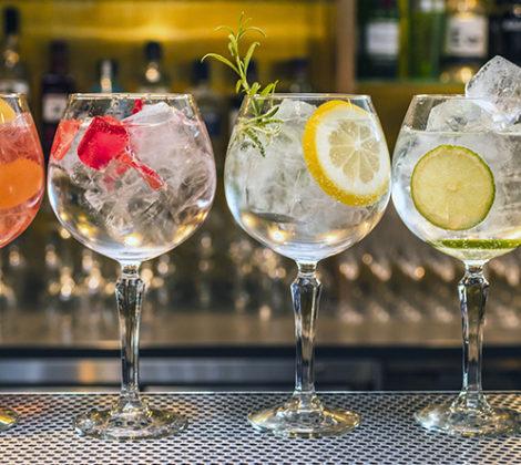 Gin soorten: ontdek ze allemaal