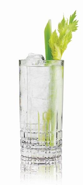 Maak een smaakvolle gin-tonic met Rutte Celery Gin