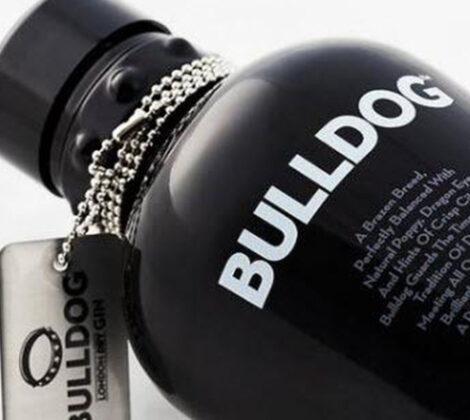 Bulldog gin-tonic: eenvoudig & lekker!