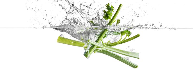 Selderij: een bijzonder ingrediënt van de Rutte Celery Gin