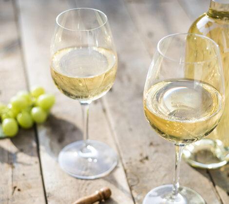 Pinot grigio: ontdek de druif en de wijn
